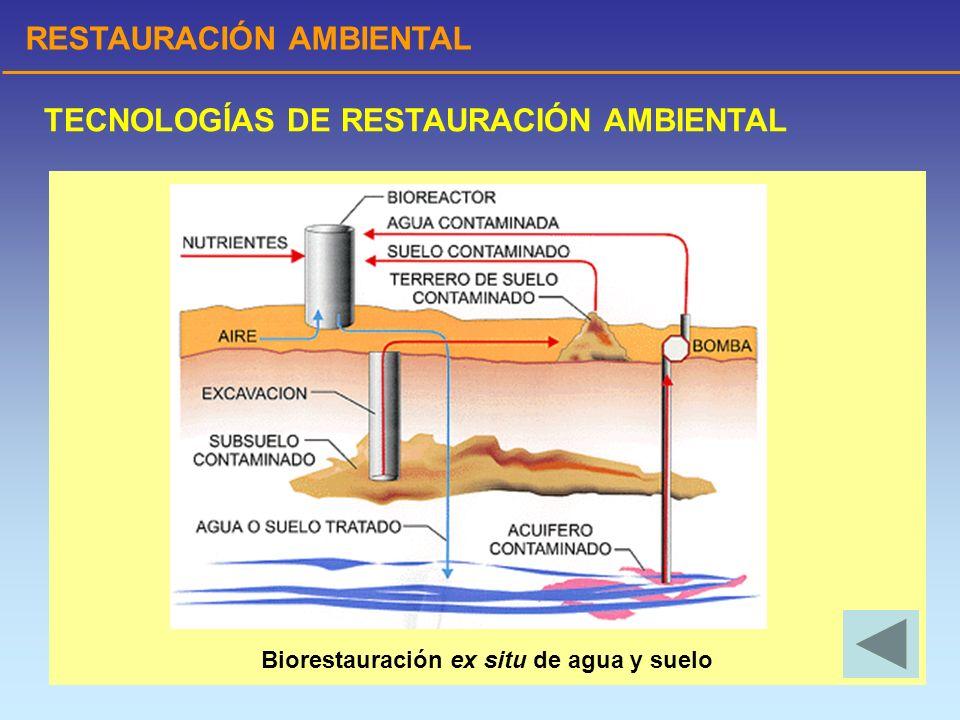 Biorestauración ex situ de agua y suelo