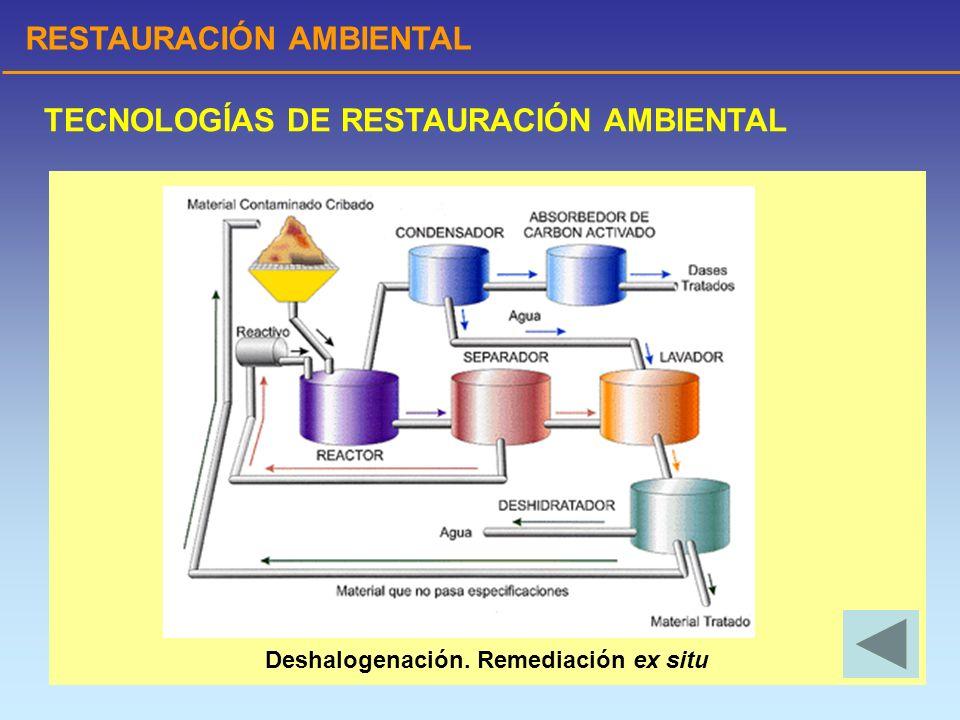 Deshalogenación. Remediación ex situ