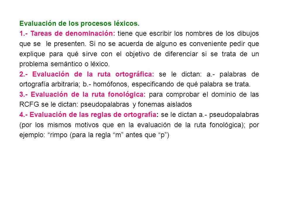 Evaluación de los procesos léxicos.