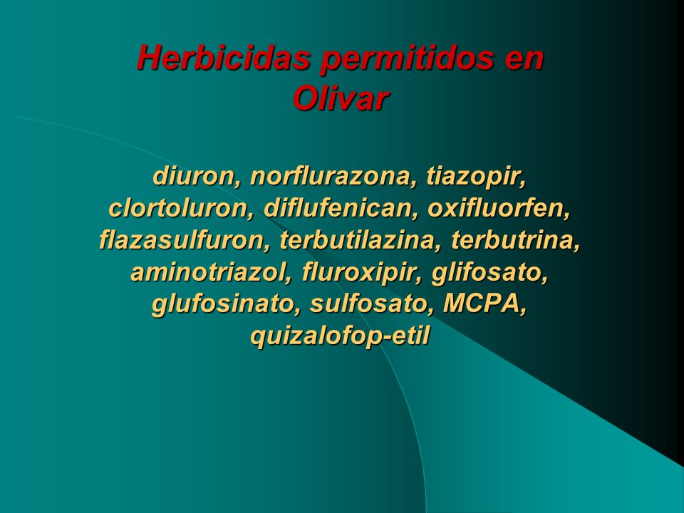 Herbicidas permitidos en Olivar diuron, norflurazona, tiazopir, clortoluron, diflufenican, oxifluorfen, flazasulfuron, terbutilazina, terbutrina, aminotriazol, fluroxipir, glifosato, glufosinato, sulfosato, MCPA, quizalofop-etil