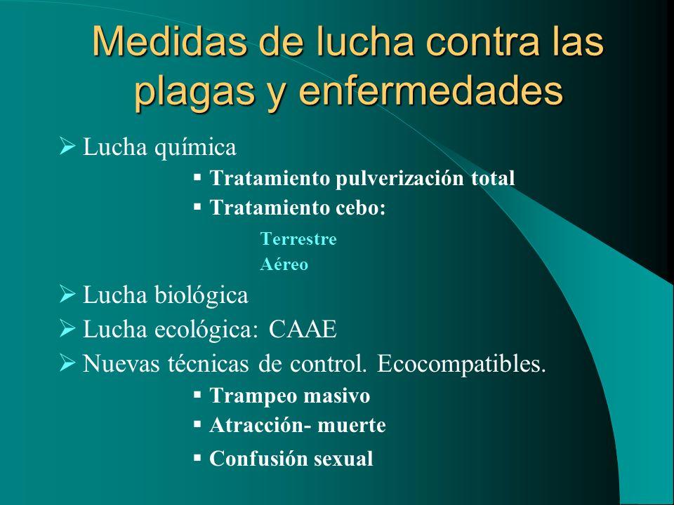 Medidas de lucha contra las plagas y enfermedades