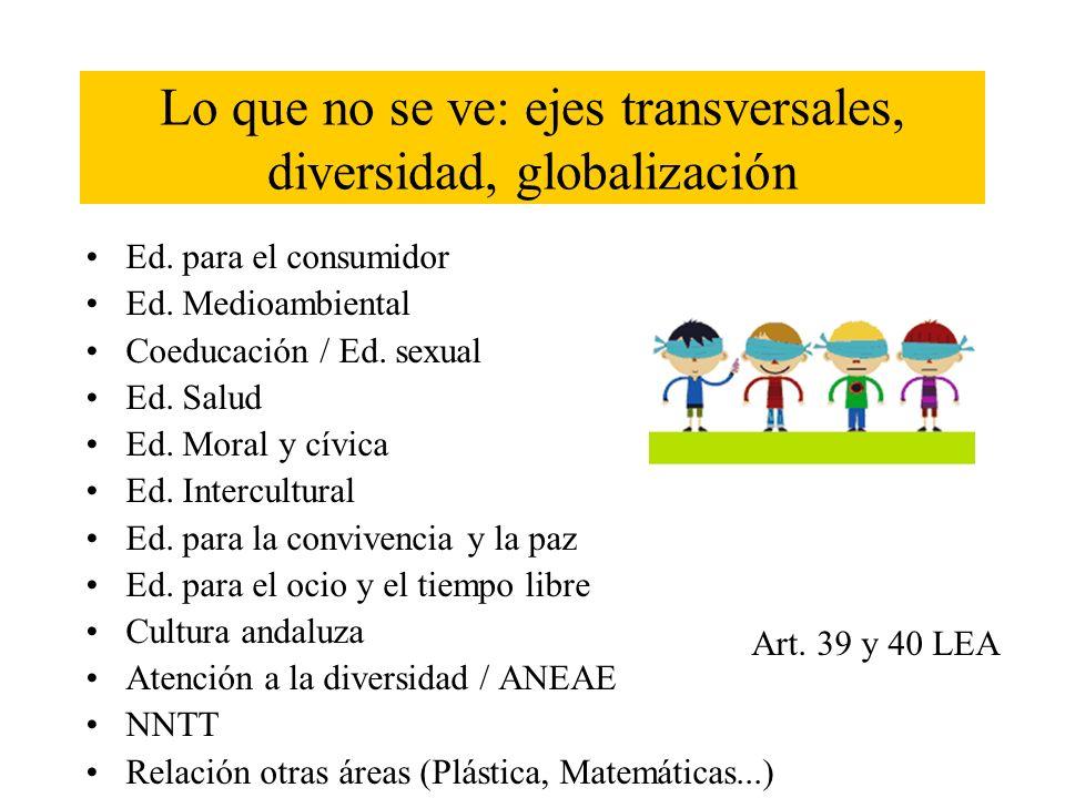 Lo que no se ve: ejes transversales, diversidad, globalización