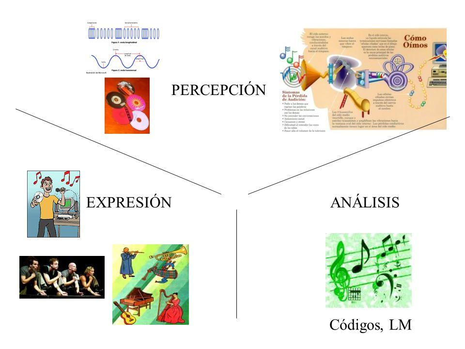 PERCEPCIÓN EXPRESIÓN ANÁLISIS Códigos, LM