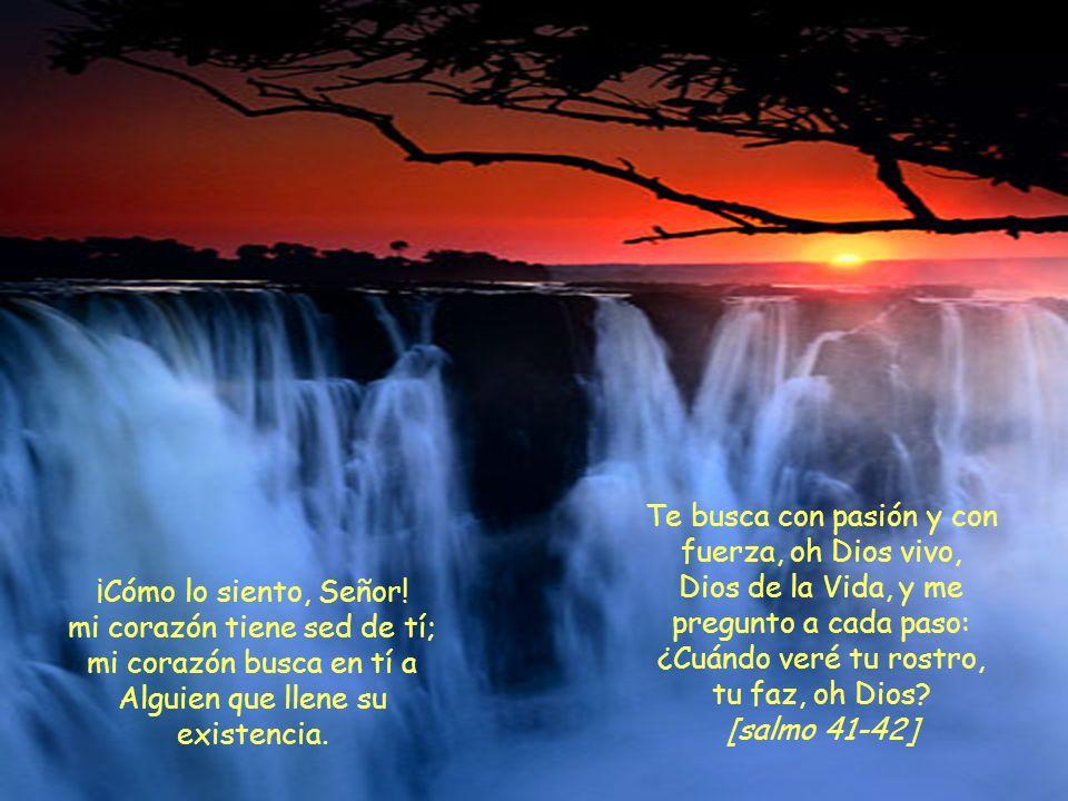 Te busca con pasión y con fuerza, oh Dios vivo,