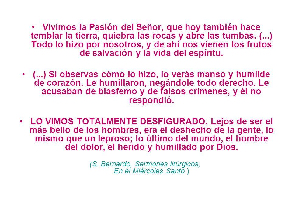 (S. Bernardo, Sermones litúrgicos, En el Miércoles Santo )