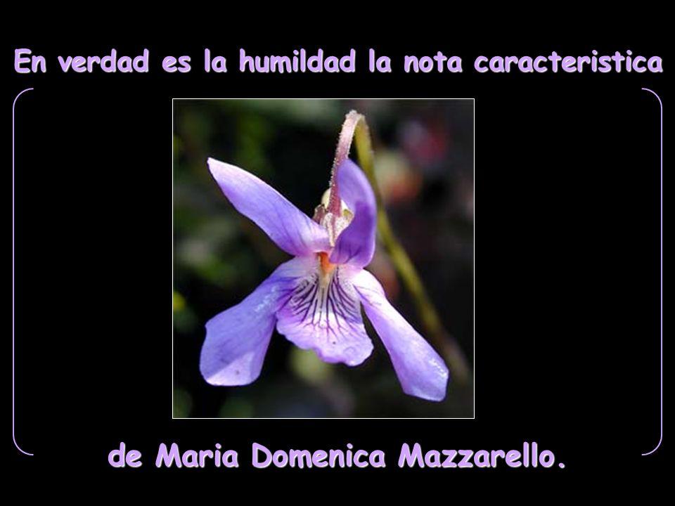 de Maria Domenica Mazzarello.
