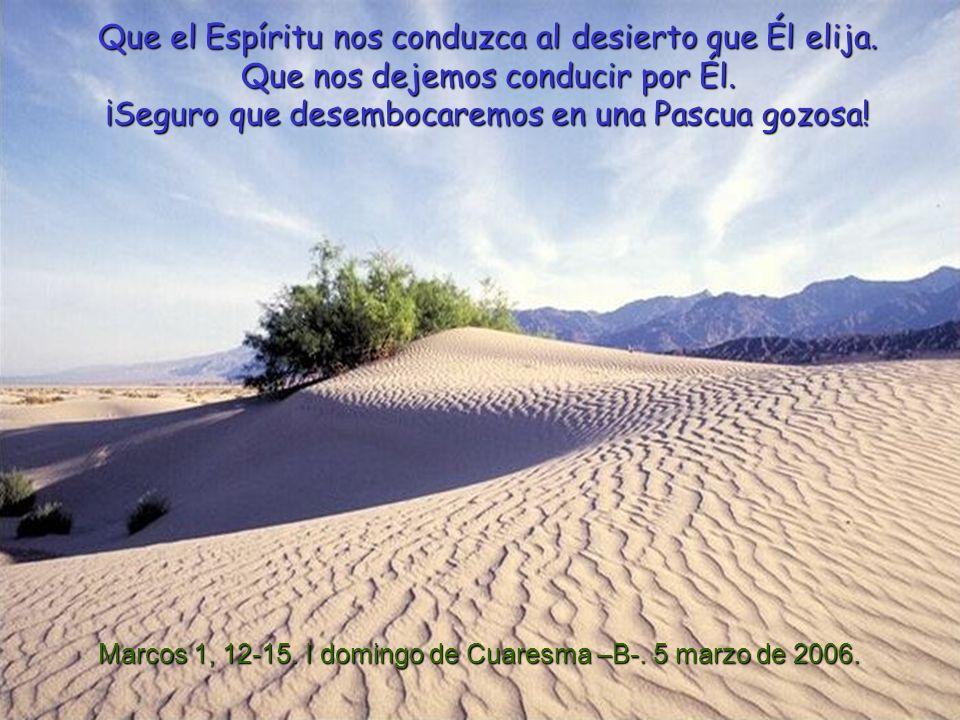Que el Espíritu nos conduzca al desierto que Él elija.