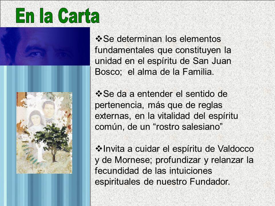 En la Carta Se determinan los elementos fundamentales que constituyen la unidad en el espíritu de San Juan Bosco; el alma de la Familia.