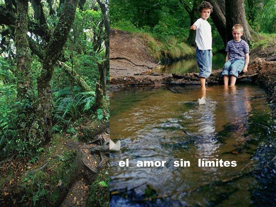 el amor sin límites