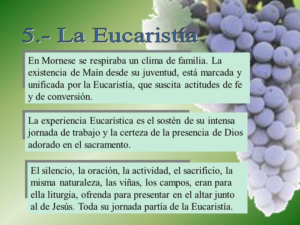 5.- La Eucaristía