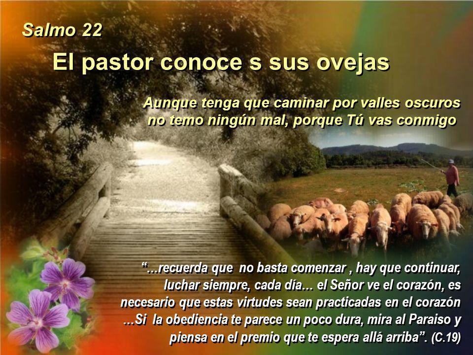 El pastor conoce s sus ovejas