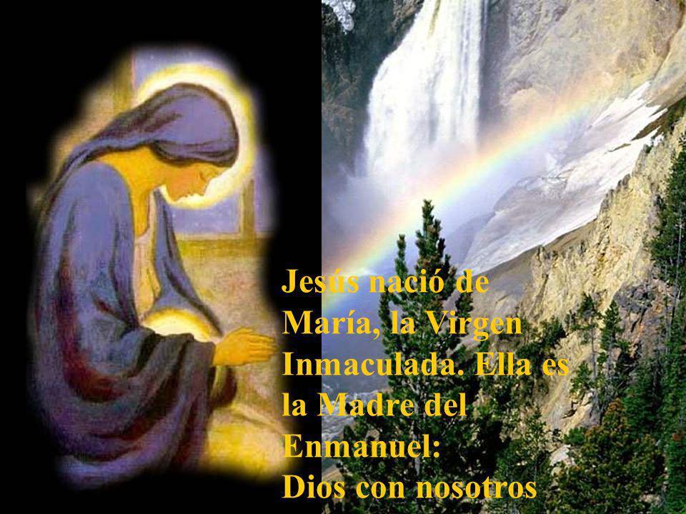 Jesús nació de María, la Virgen
