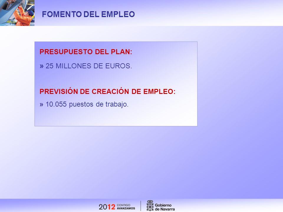 FOMENTO DEL EMPLEO » 25 MILLONES DE EUROS. PRESUPUESTO DEL PLAN: