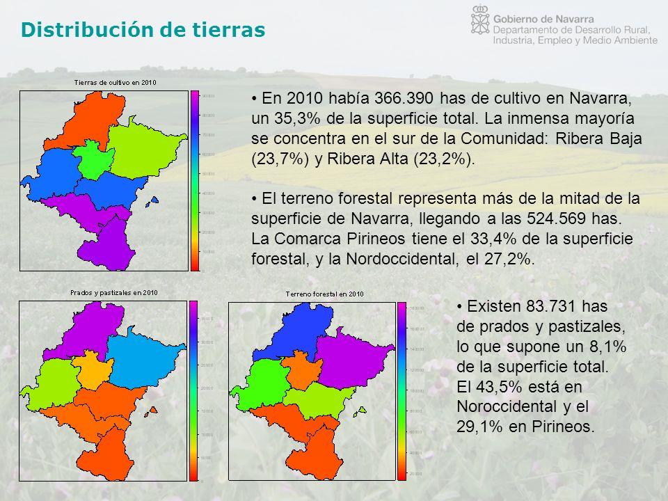 Distribución de tierras