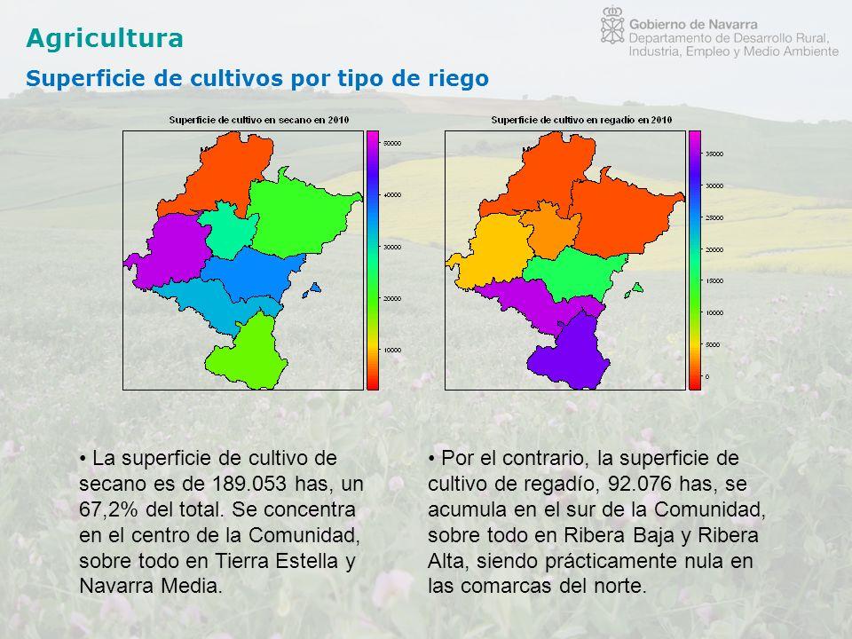 Agricultura Superficie de cultivos por tipo de riego
