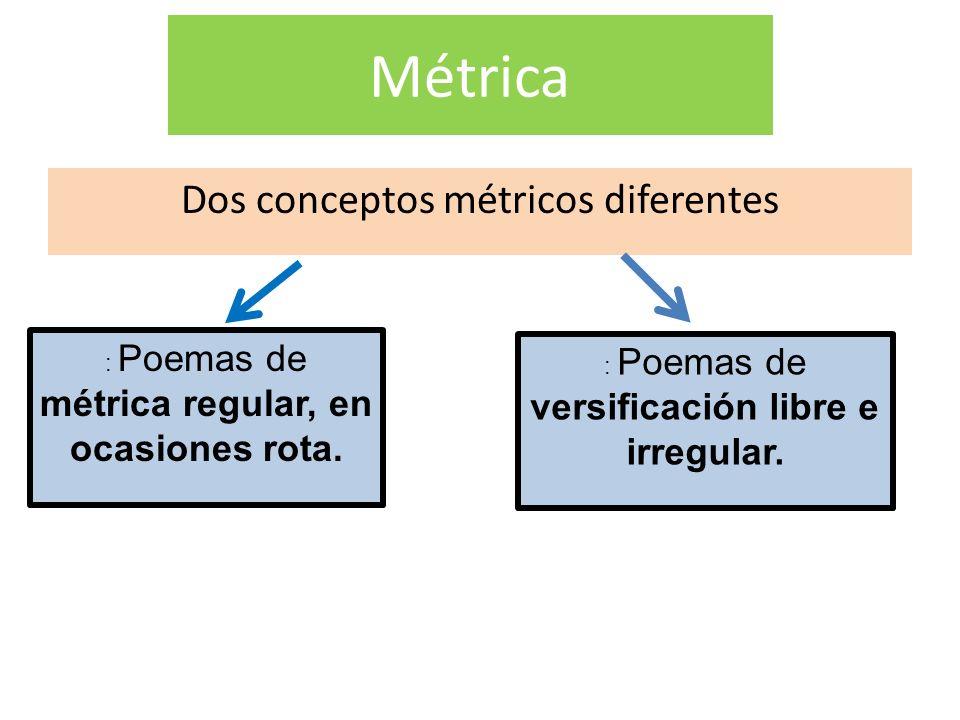Métrica Dos conceptos métricos diferentes