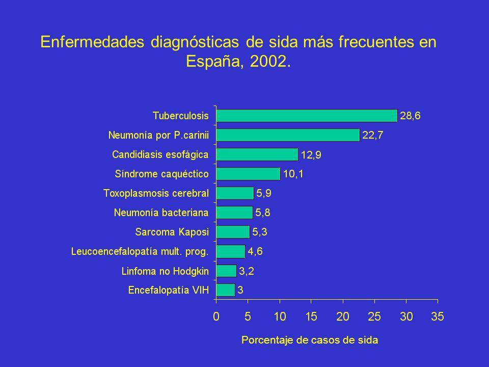 Enfermedades diagnósticas de sida más frecuentes en España, 2002.