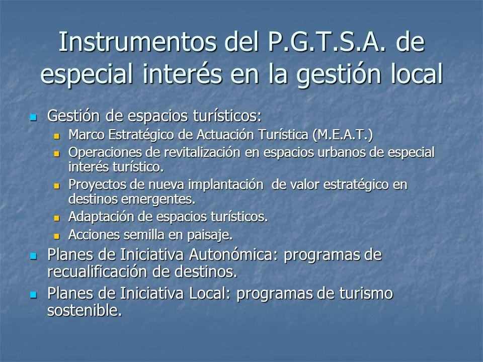 Instrumentos del P.G.T.S.A. de especial interés en la gestión local