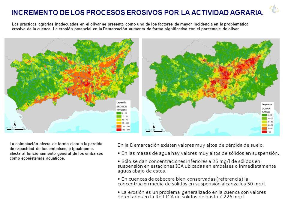INCREMENTO DE LOS PROCESOS EROSIVOS POR LA ACTIVIDAD AGRARIA.