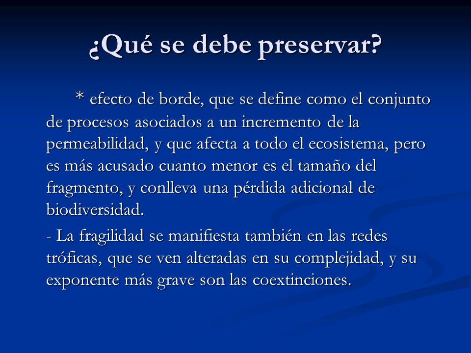 ¿Qué se debe preservar