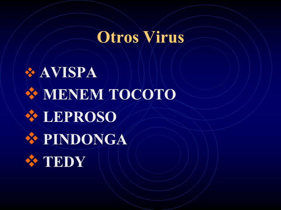 Otros Virus AVISPA MENEM TOCOTO LEPROSO PINDONGA TEDY