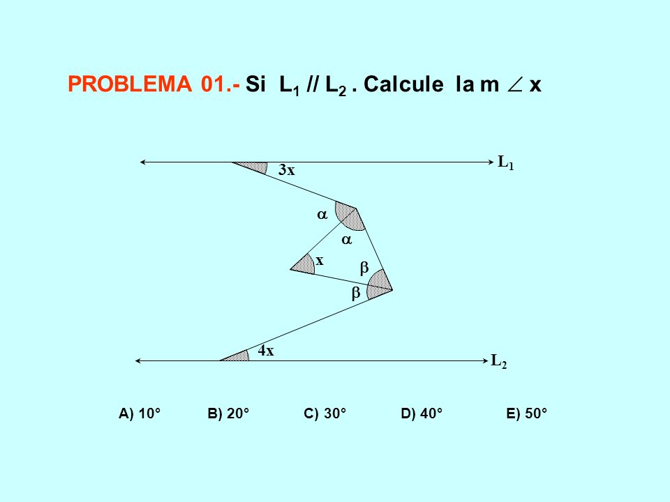 PROBLEMA 01.- Si L1 // L2 . Calcule la m  x