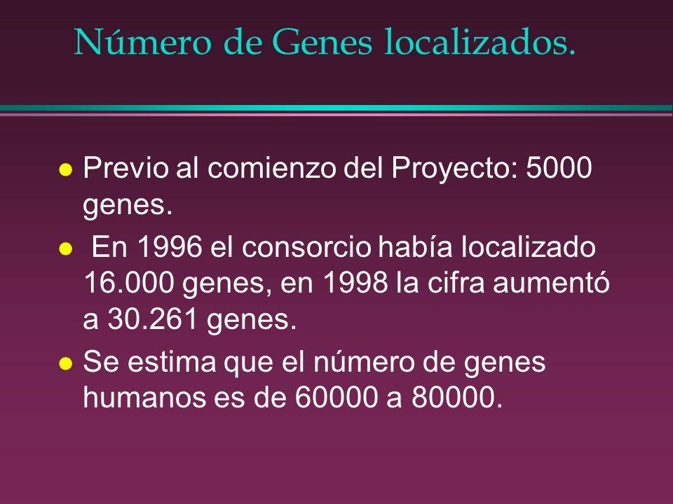 Número de Genes localizados.