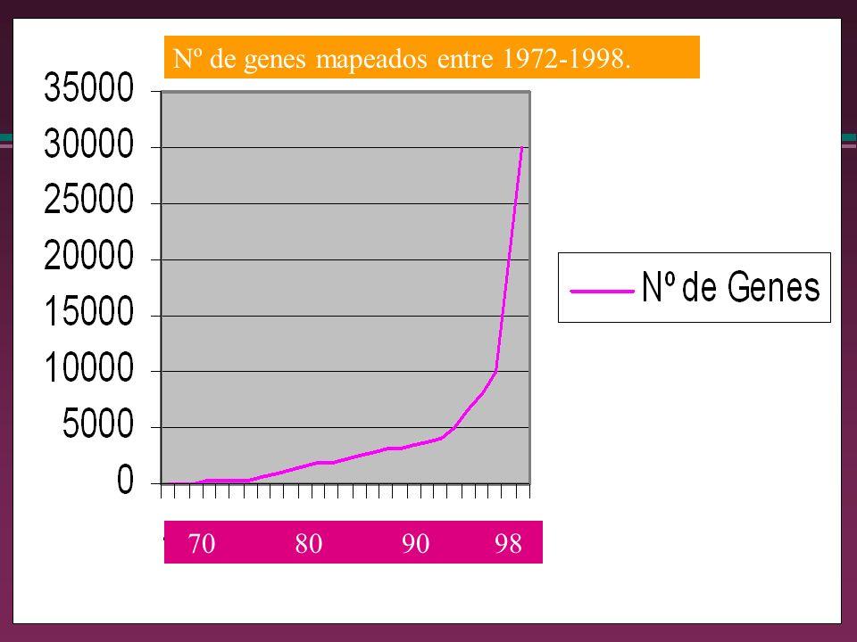 Nº de genes mapeados entre 1972-1998.
