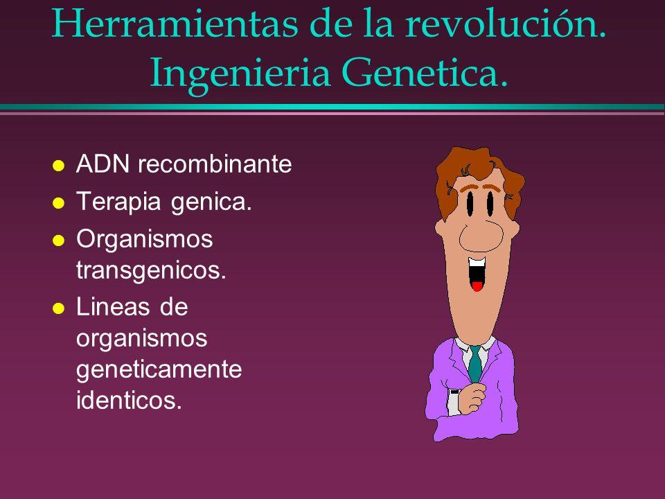 Herramientas de la revolución. Ingenieria Genetica.