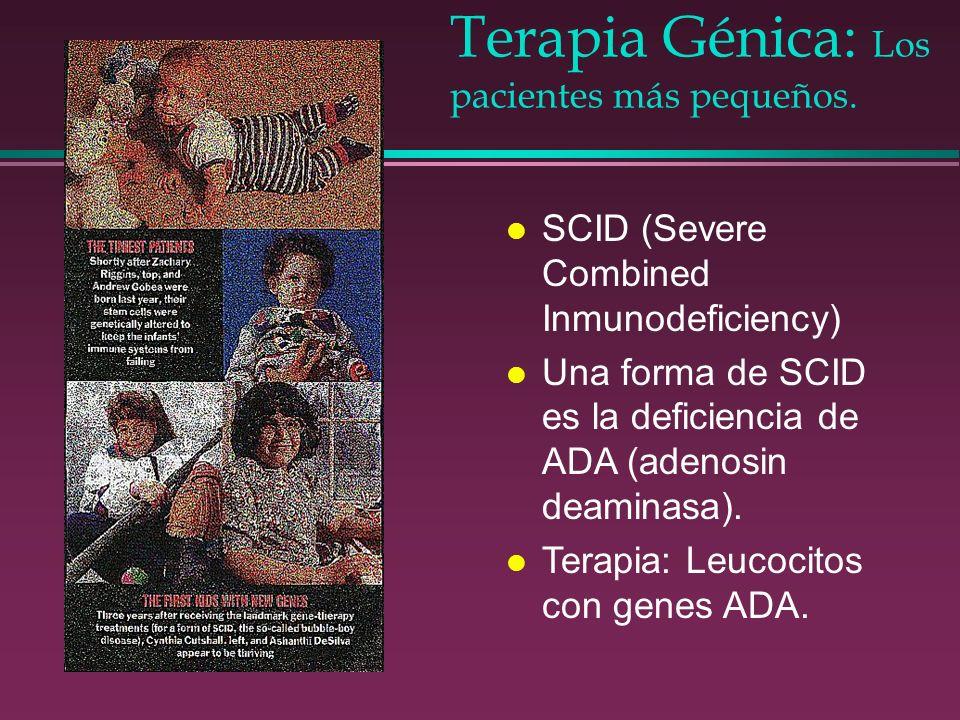 Terapia Génica: Los pacientes más pequeños.