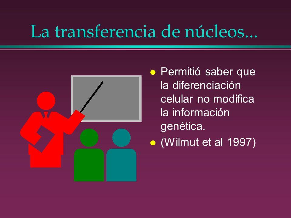 La transferencia de núcleos...