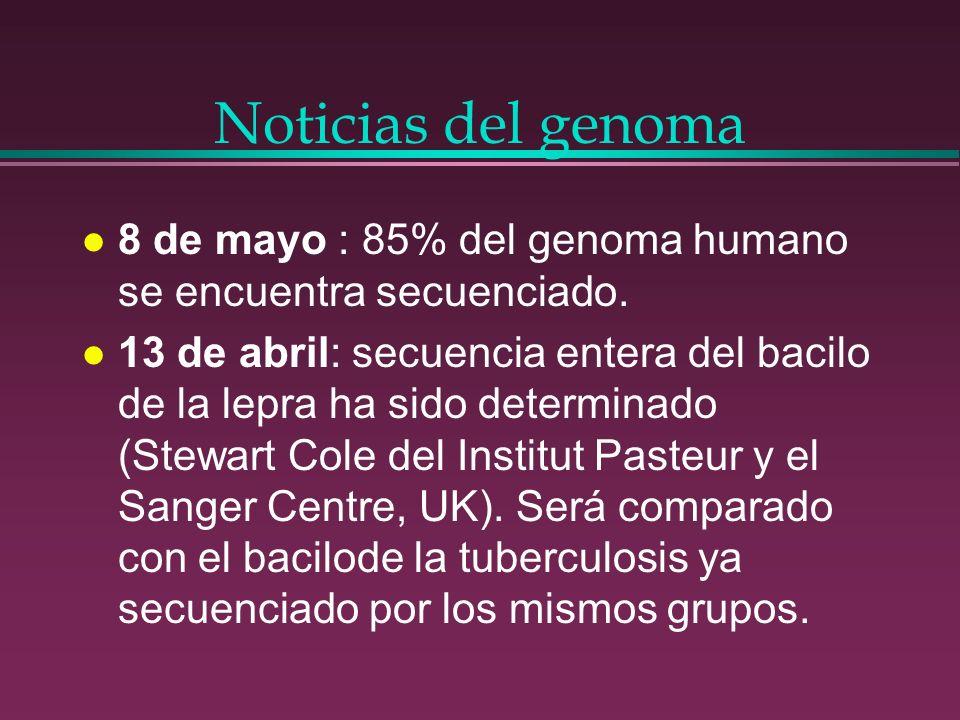 Noticias del genoma 8 de mayo : 85% del genoma humano se encuentra secuenciado.