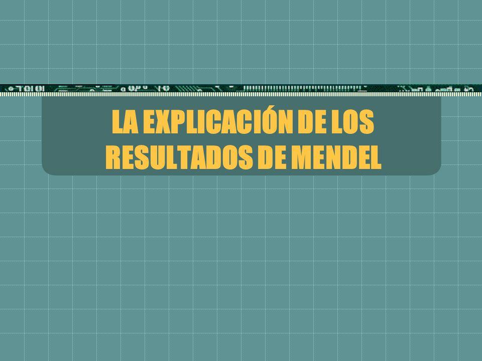 LA EXPLICACIÓN DE LOS RESULTADOS DE MENDEL