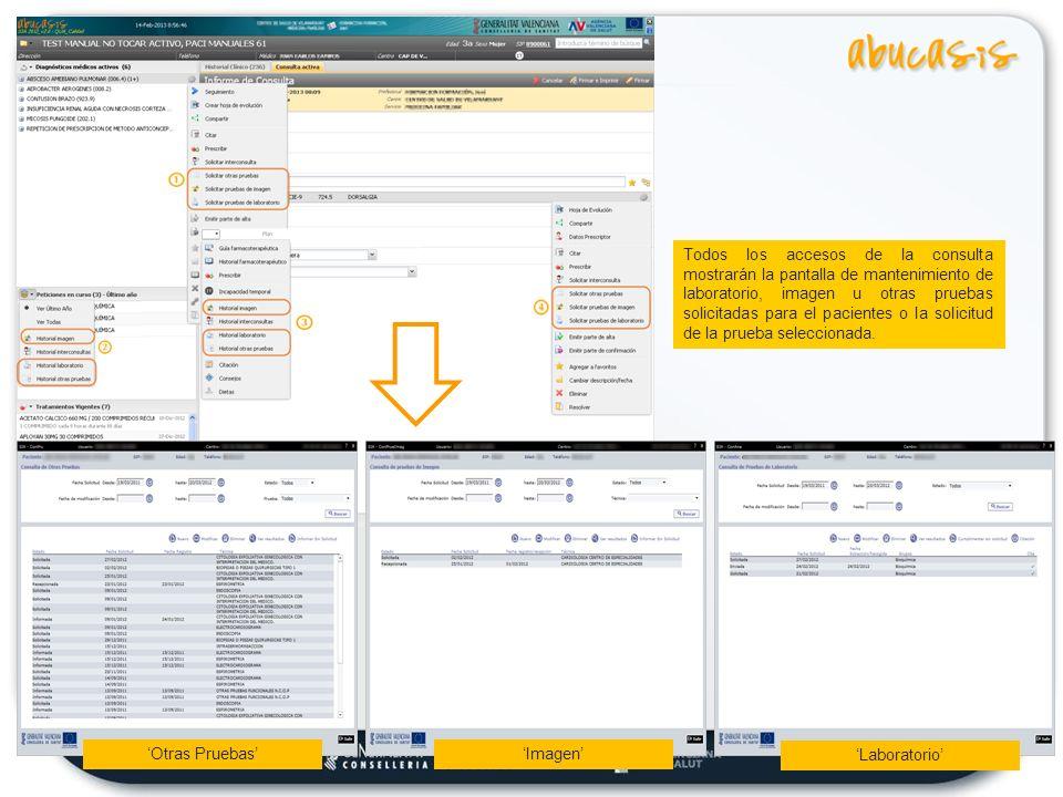 Todos los accesos de la consulta mostrarán la pantalla de mantenimiento de laboratorio, imagen u otras pruebas solicitadas para el pacientes o la solicitud de la prueba seleccionada.