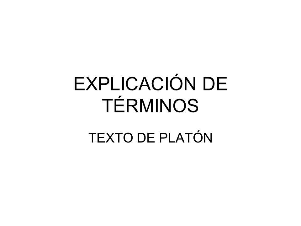 EXPLICACIÓN DE TÉRMINOS