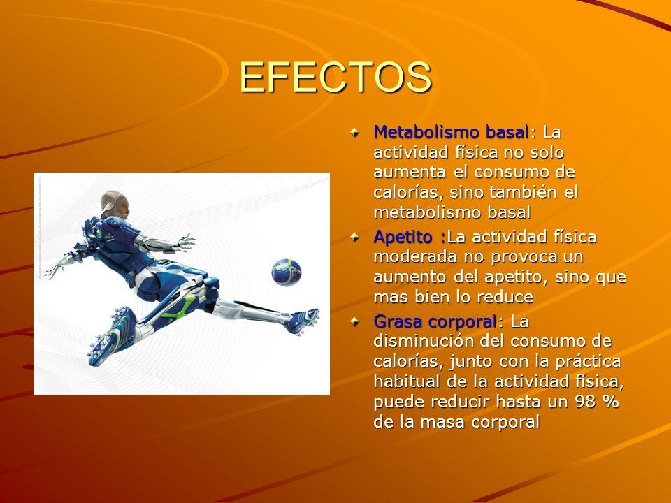 EFECTOS Metabolismo basal: La actividad física no solo aumenta el consumo de calorías, sino también el metabolismo basal.