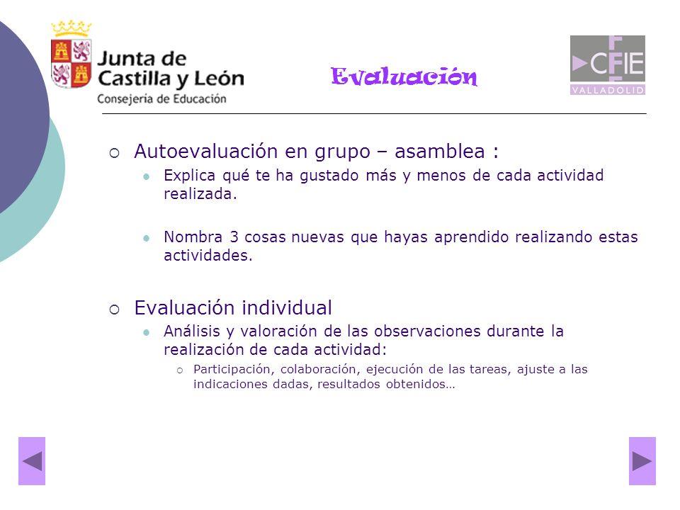 Evaluación Autoevaluación en grupo – asamblea : Evaluación individual