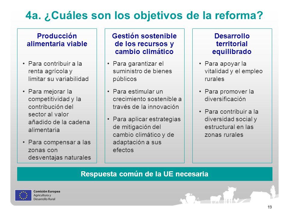 4a. ¿Cuáles son los objetivos de la reforma