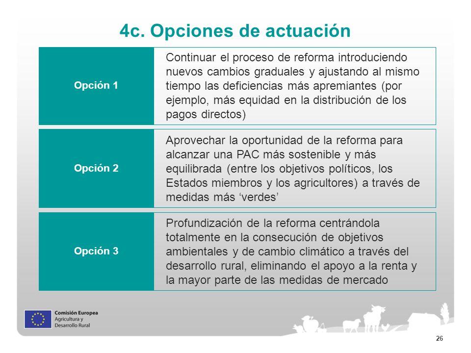 4c. Opciones de actuación