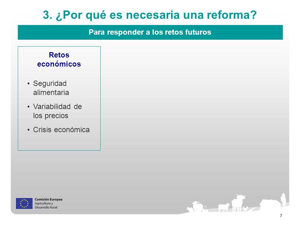 3. ¿Por qué es necesaria una reforma