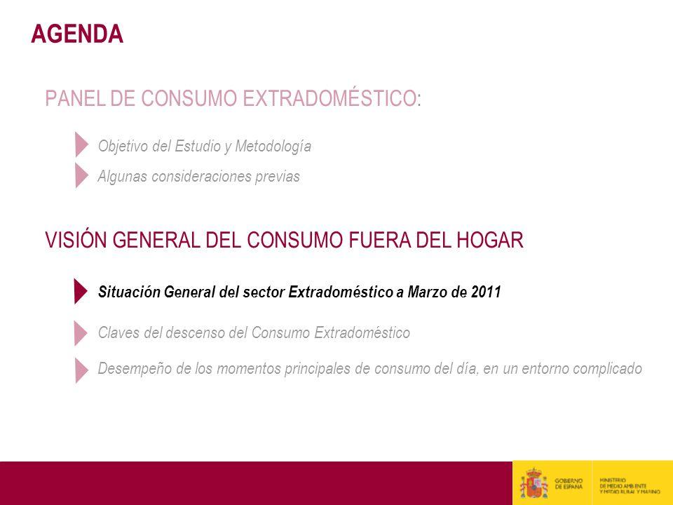 AGENDA PANEL DE CONSUMO EXTRADOMÉSTICO: