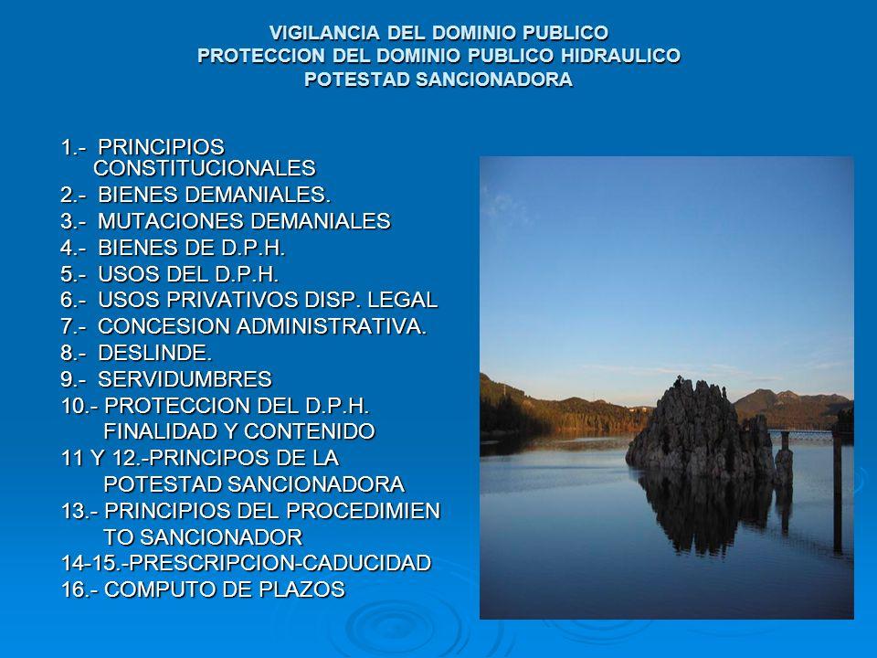 1.- PRINCIPIOS CONSTITUCIONALES 2.- BIENES DEMANIALES.