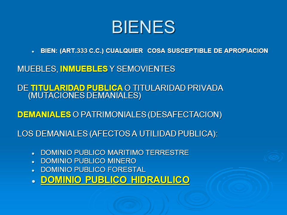 BIENES DOMINIO PUBLICO HIDRAULICO MUEBLES, INMUEBLES Y SEMOVIENTES