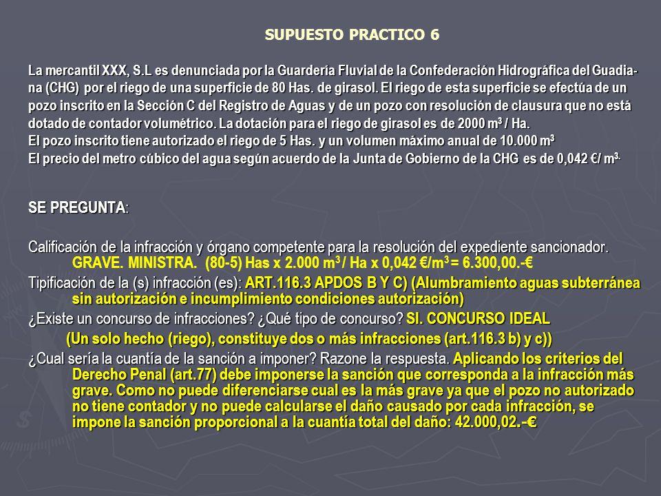 SUPUESTO PRACTICO 6 La mercantil XXX, S.L es denunciada por la Guardería Fluvial de la Confederación Hidrográfica del Guadia-