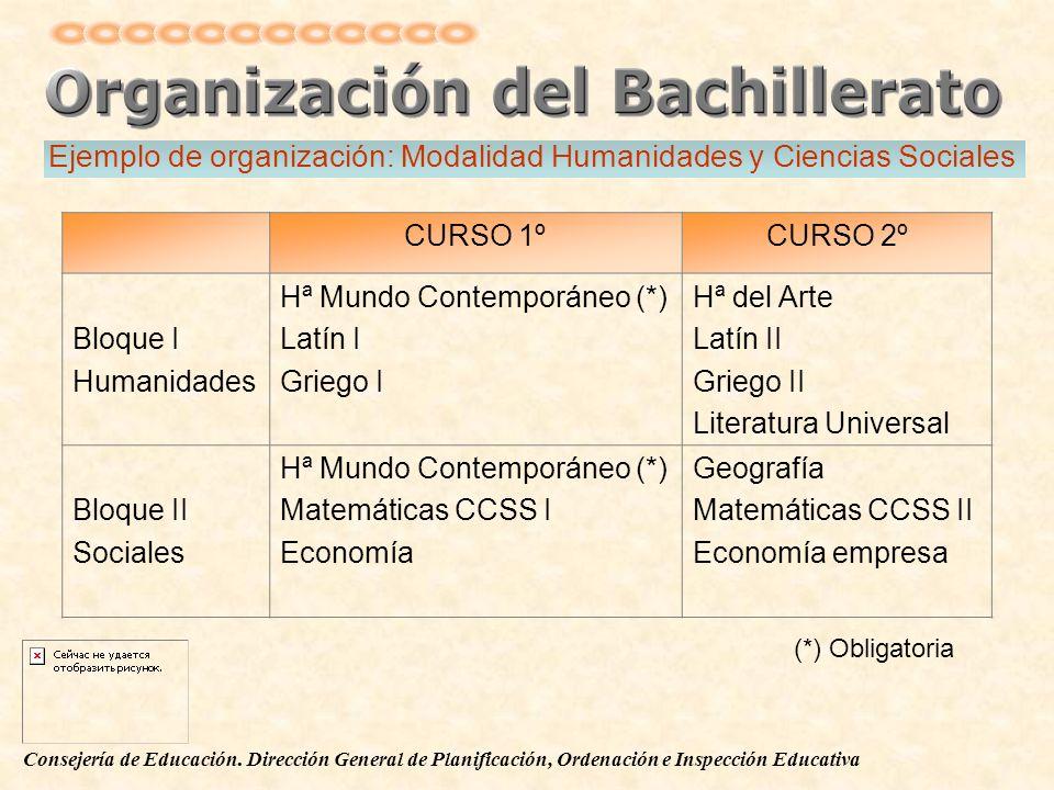 Ejemplo de organización: Modalidad Humanidades y Ciencias Sociales