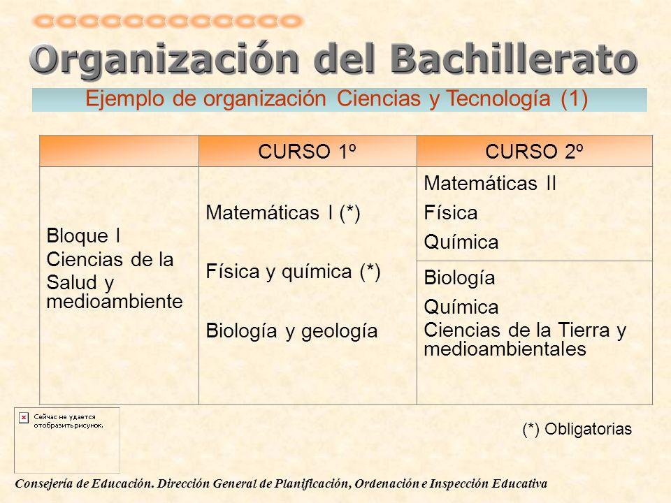 Ejemplo de organización Ciencias y Tecnología (1)