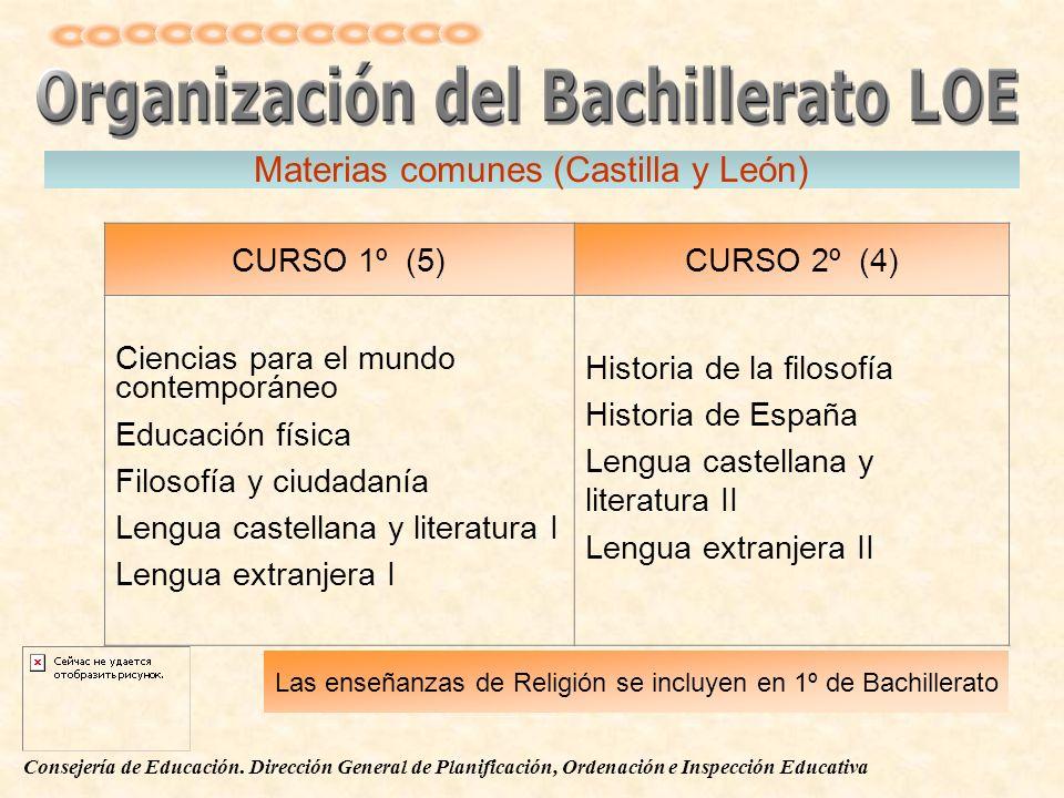Materias comunes (Castilla y León)