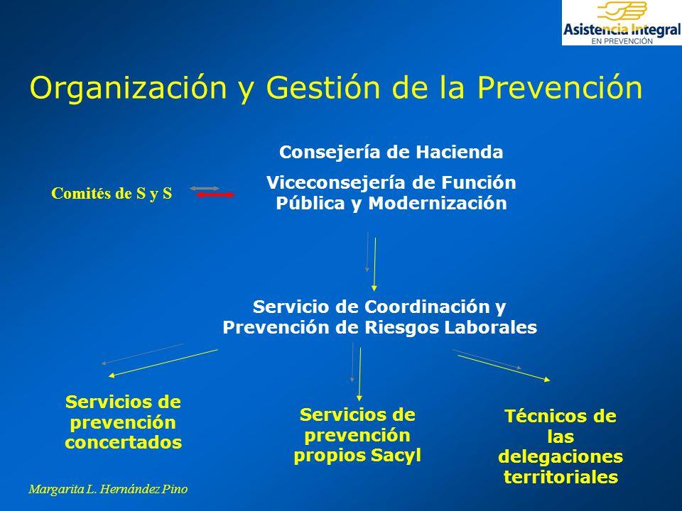 Organización y Gestión de la Prevención