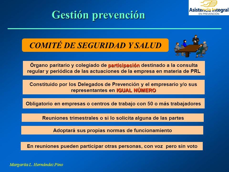 Gestión prevención COMITÉ DE SEGURIDAD Y SALUD