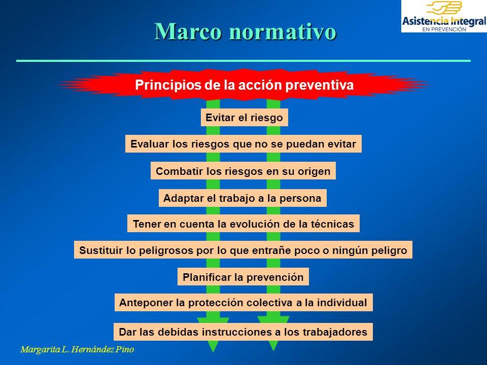 Marco normativo Principios de la acción preventiva Evitar el riesgo
